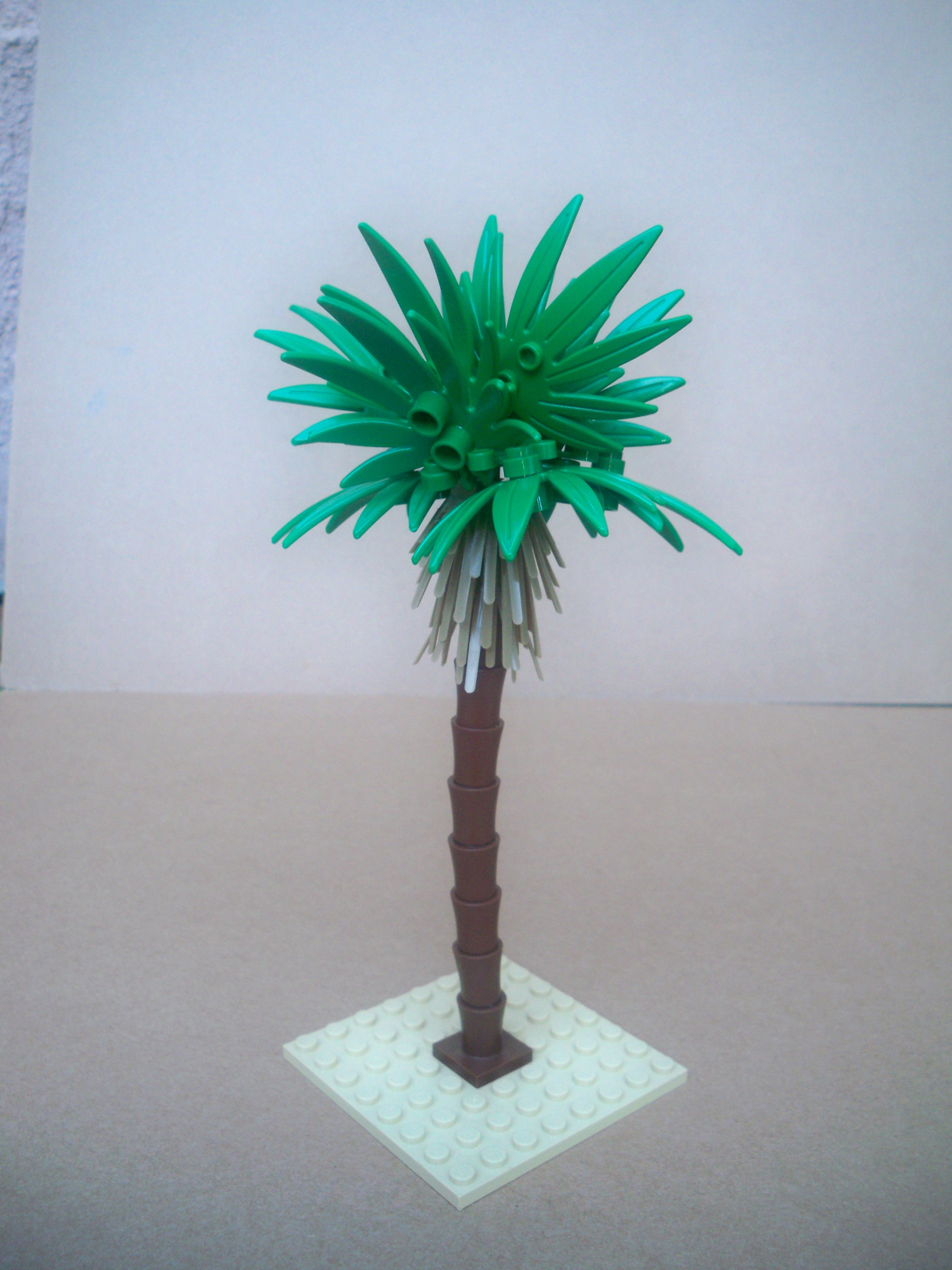 Masa palm tree